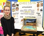 Girl stands before her Science Fair project on cheetahs